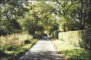 One of Ellisfield's lanes